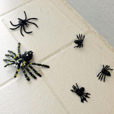 Halloween - edderkopper